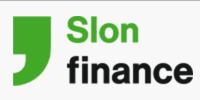 Slon finance (Выданный займ)